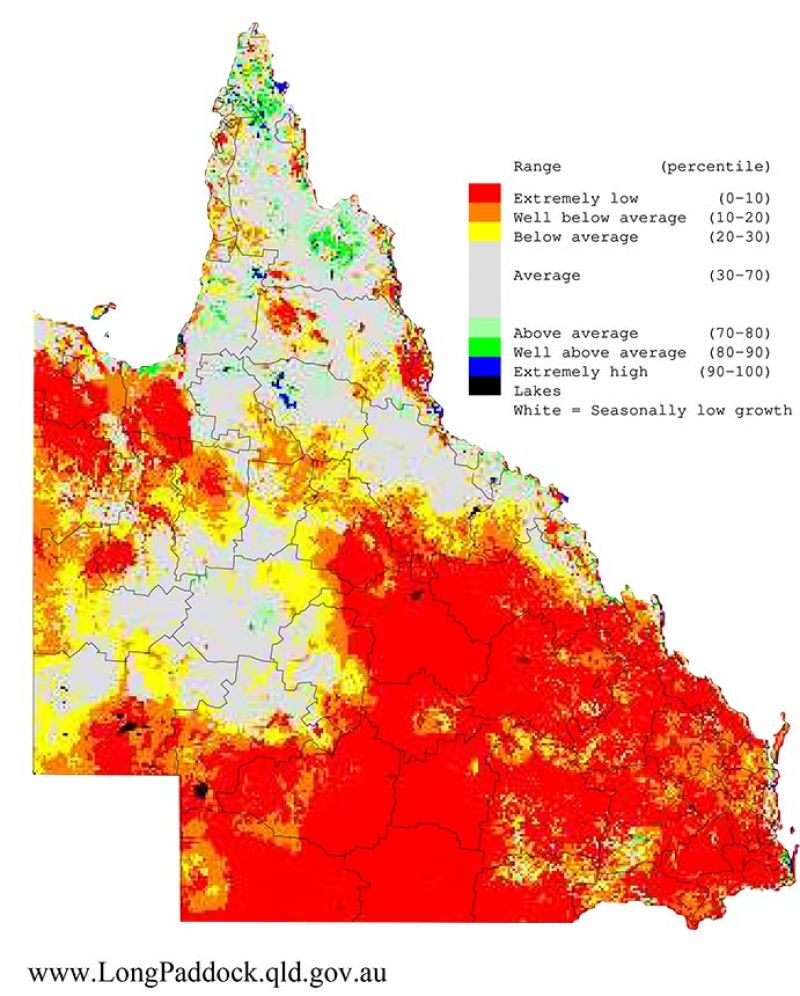 Maps show the last three 12-month periods (April-March) of rainfall and pasture growth for Queensland as percentiles (i.e. relative to history).