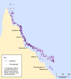Evidence of crown-of-thorns starfish outbreaks, 1985-2013