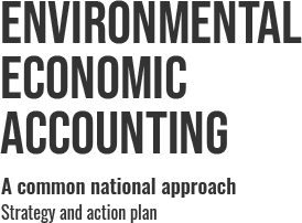Environmental Economic Accounting Strategy and Action Plan Logo